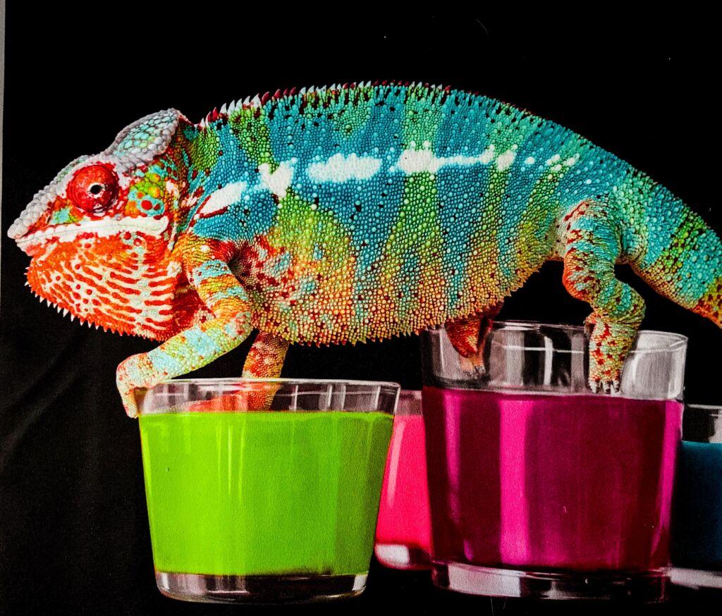 Печать на ткани флуоресцентными красками